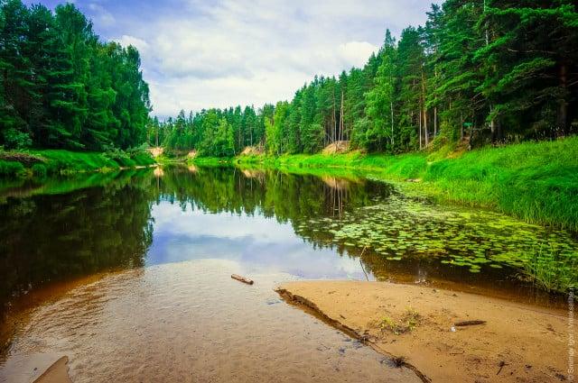 reka-mologa-2