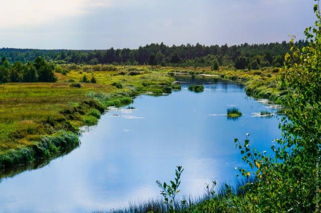 reka-Volchina-Maksatihinskogo-rajona