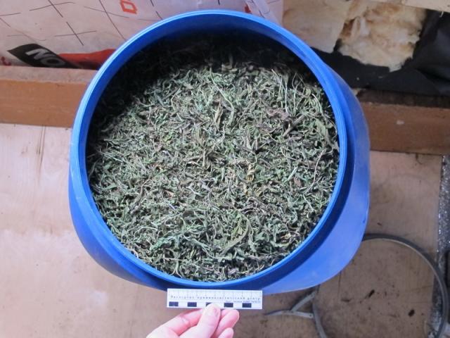 bochka-marihuany-1