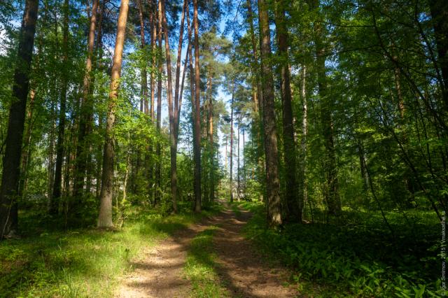 parkovaya-zona (1)
