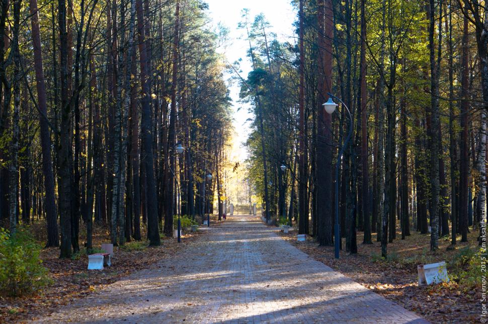 autumn-2015 (1)