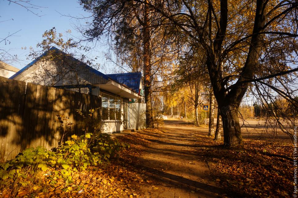 autumn-2015 (11)