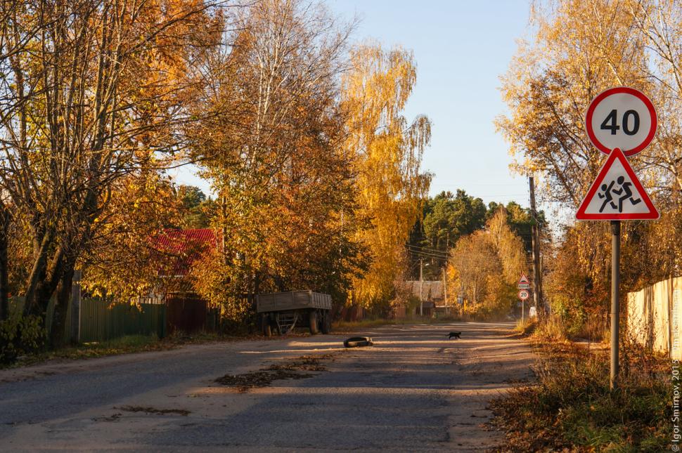 autumn-2015 (18)