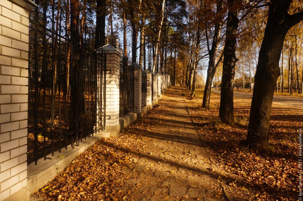autumn-2015 (6)